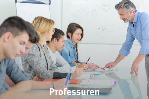 Bild Professuren
