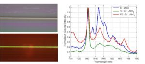 Fluorescence in LNOI ridge waveguides