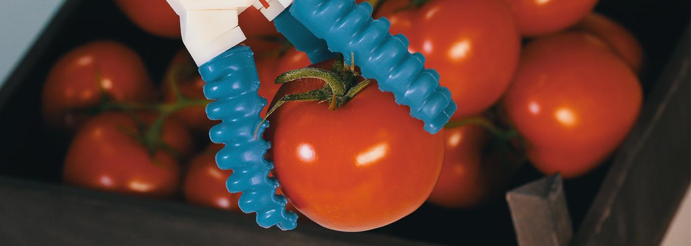 3-Finger Greifer mit Tomate