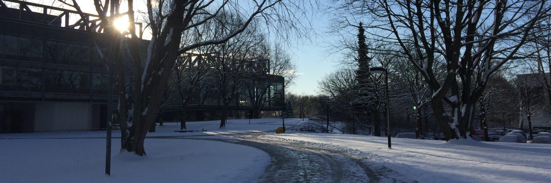 HSU Schnee
