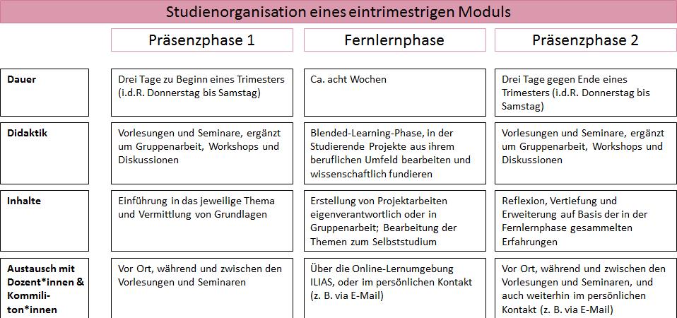 Studienorganisation eines eintrimestrigen Moduls