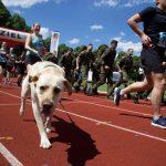 Zwei Läuferinnen mit Hunden auf einer Tartan-Bahn